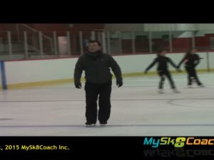 How To Get Pluses On A Salchow